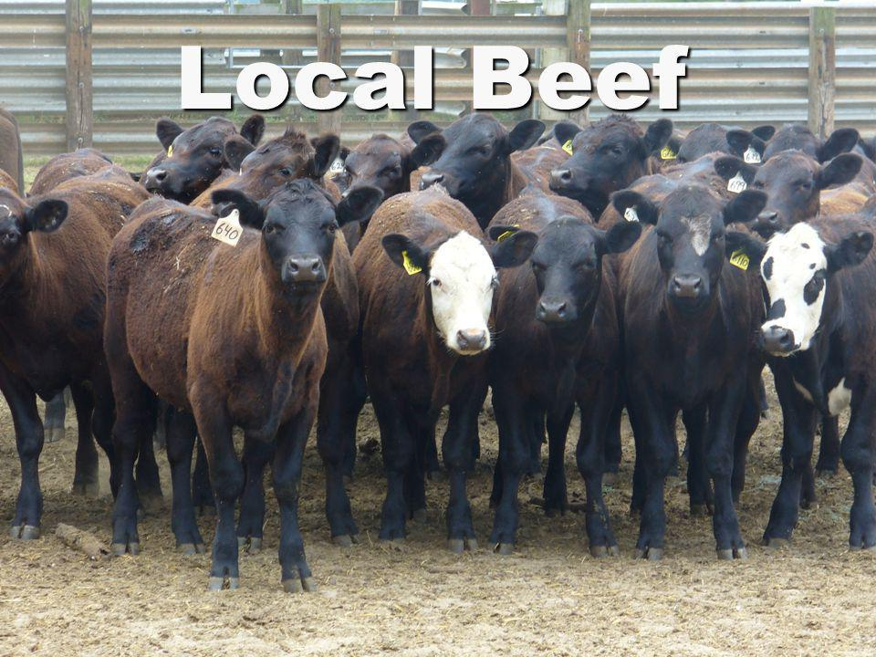 Local Beef