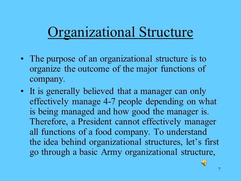 7 Organizational Structure The purpose of an organizational structure is to organize the outcome of the major functions of company.