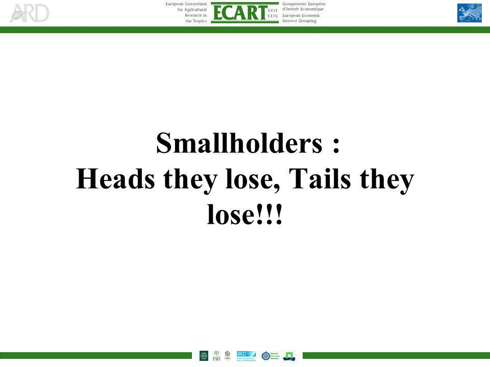 Smallholders : Heads they lose, Tails they lose!!!