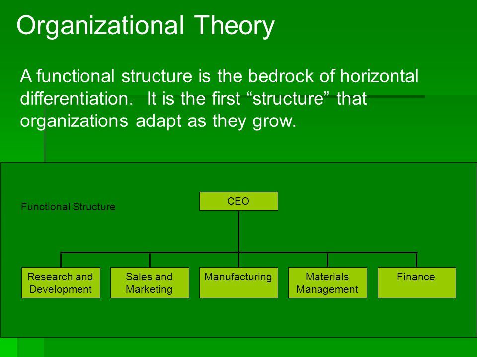 4 -3 Organizational Theory A functional structure is the bedrock of horizontal differentiation. It is the first structure that organizations adapt as