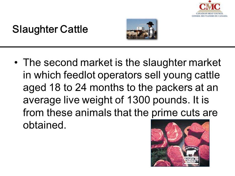 ½ price steak