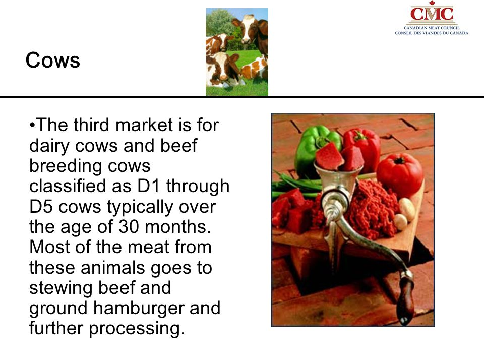 The third market is for dairy cows and beef breeding cows classified as D1 through D5 cows typically over the age of 30 months.