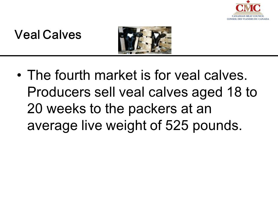 The overall live animal market The markets are functioning.