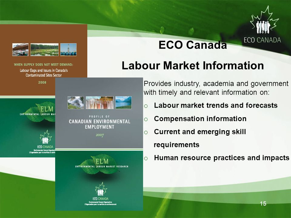 15 Provides industry, academia and government with timely and relevant information on: o Labour market trends and forecasts o Compensation information o Current and emerging skill requirements o Human resource practices and impacts ECO Canada Labour Market Information