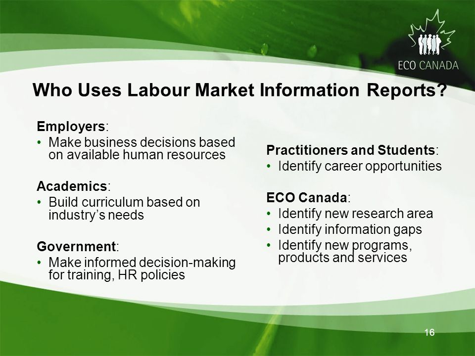 16 Who Uses Labour Market Information Reports.