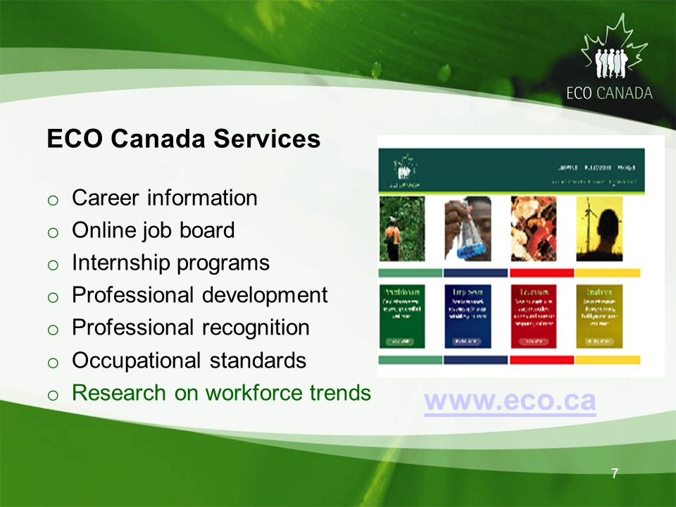 7 www.eco.ca ECO Canada Services o Career information o Online job board o Internship programs o Professional development o Professional recognition o Occupational standards o Research on workforce trends