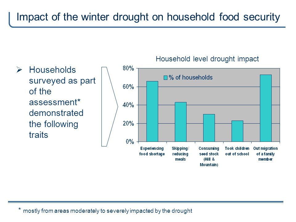 Impact of the winter drought on household food security * mostly from areas moderately to severely impacted by the drought Households surveyed as part of the assessment* demonstrated the following traits Household level drought impact