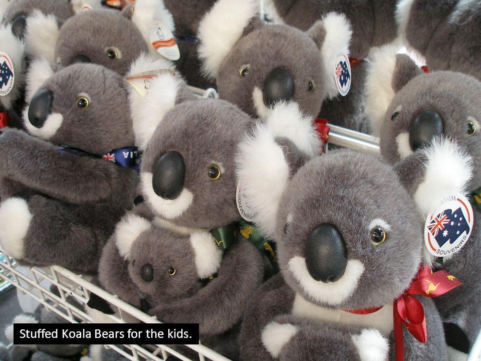 Stuffed Koala Bears for the kids.