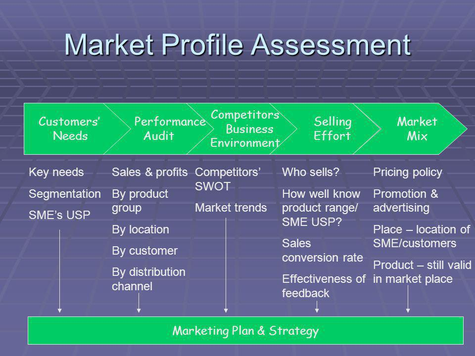 Market Profile Assessment Customers Needs Performance Audit Competitors Business Environment Selling Effort Market Mix Key needs Segmentation SMEs USP