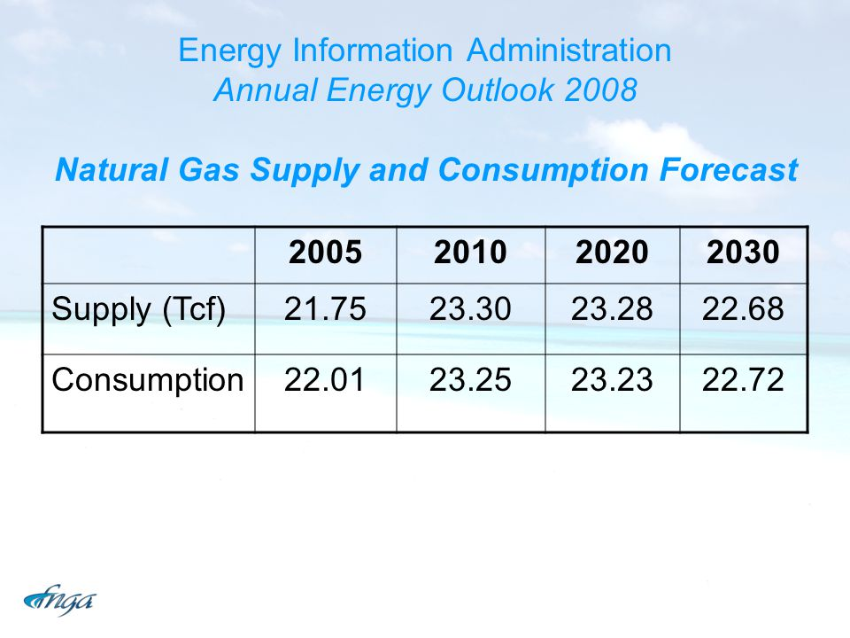Energy Information Administration Annual Energy Outlook 2008 Natural Gas Supply and Consumption Forecast 2005201020202030 Supply (Tcf)21.7523.3023.2822.68 Consumption22.0123.2523.2322.72