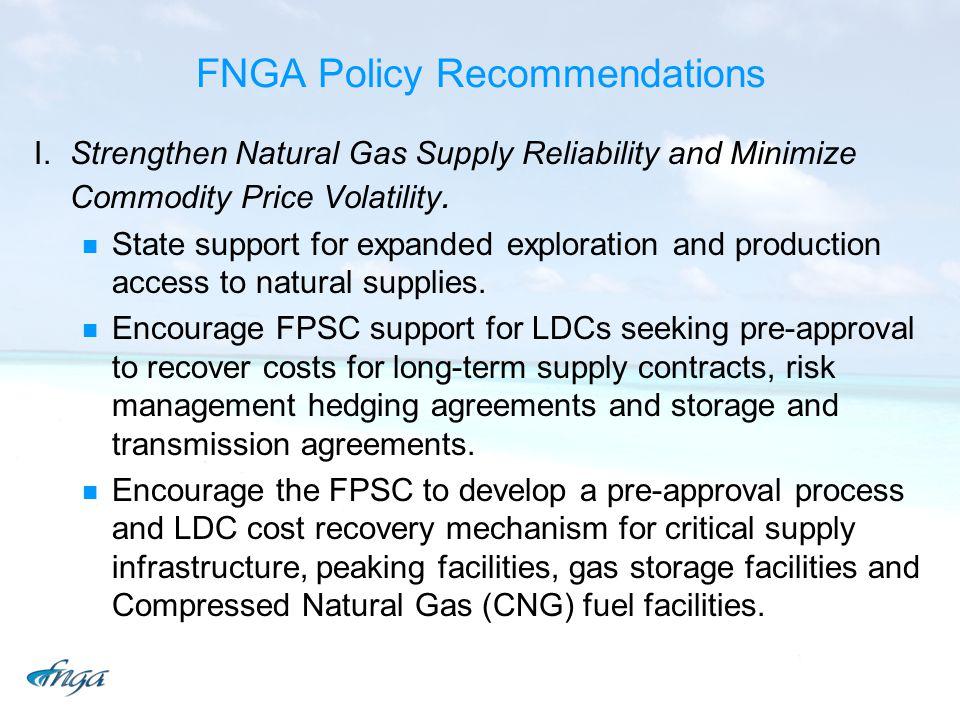 FNGA Policy Recommendations I.Strengthen Natural Gas Supply Reliability and Minimize Commodity Price Volatility.