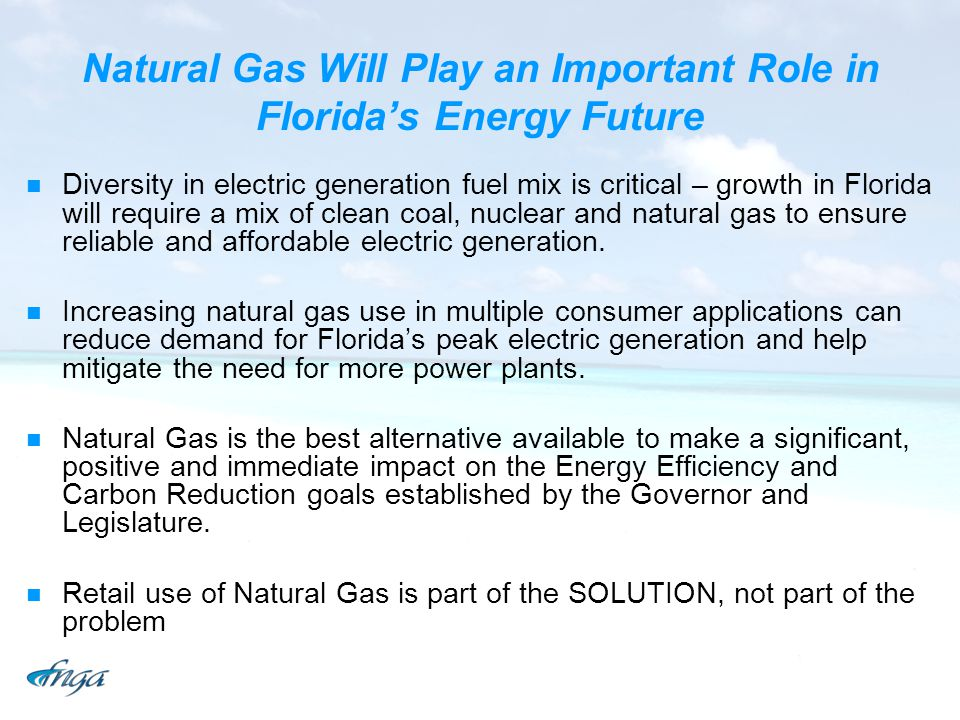 Natural Gas Will Play an Important Role in Floridas Energy Future Diversity in electric generation fuel mix is critical – growth in Florida will require a mix of clean coal, nuclear and natural gas to ensure reliable and affordable electric generation.