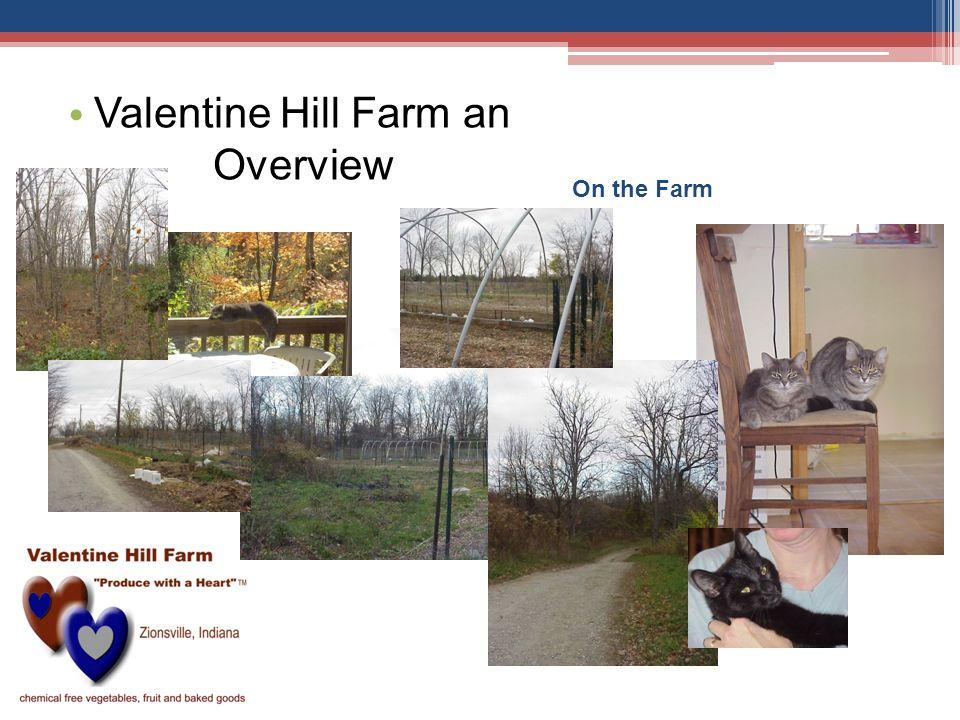 On the Farm Valentine Hill Farm an Overview