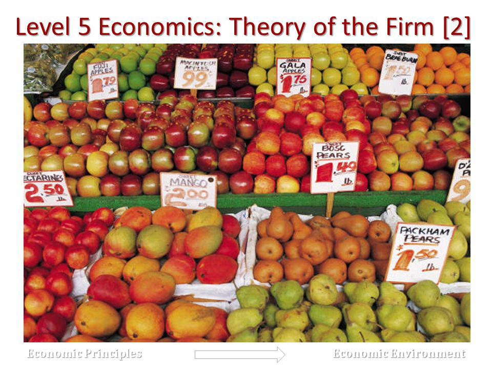 Level 5 Economics: Theory of the Firm [2] Economic Principles Economic Principles Economic Environment Economic Environment