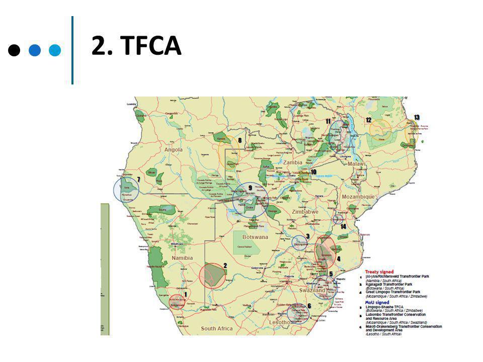 2. TFCA