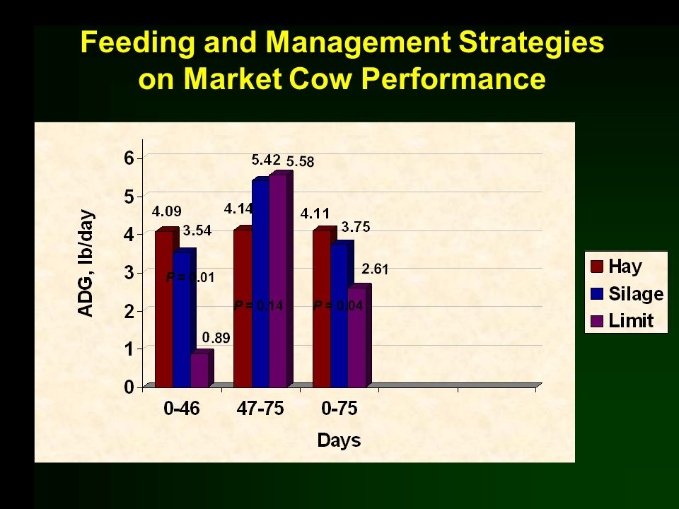 Feeding and Management Strategies on Market Cow Performance P = 0.01 P = 0.14P = 0.04