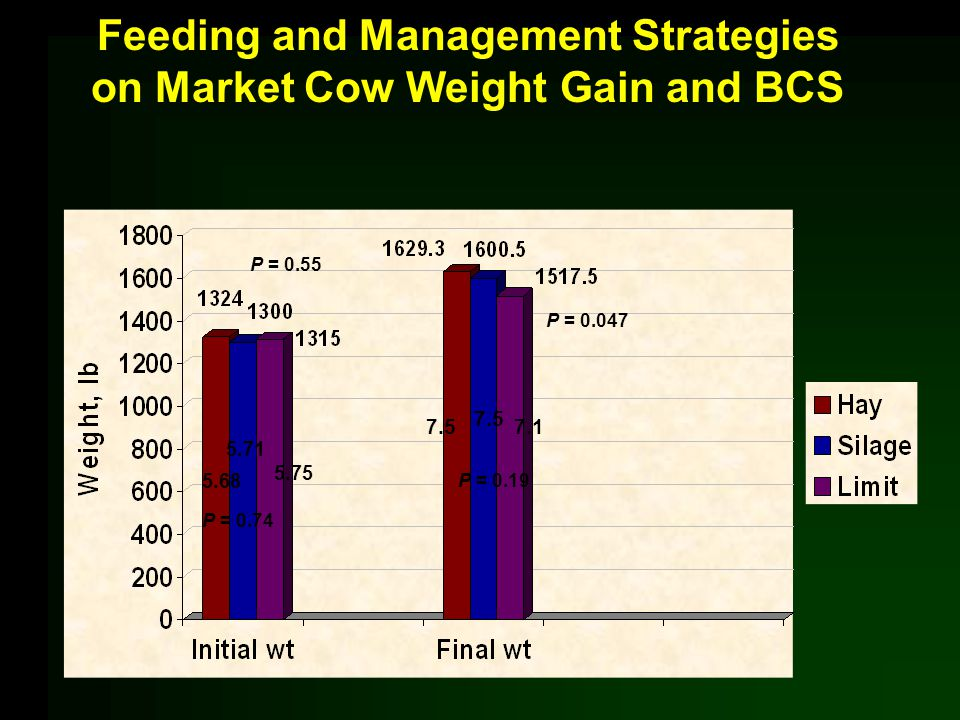 Feeding and Management Strategies on Market Cow Weight Gain and BCS 5.68 5.71 5.75 7.5 7.1 P = 0.74 P = 0.55 P = 0.19 P = 0.047