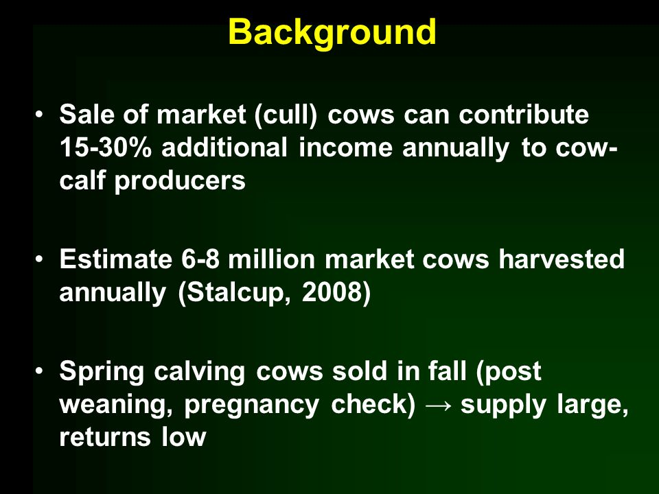 Background Sale of market (cull) cows can contribute 15-30% additional income annually to cow- calf producers Estimate 6-8 million market cows harvested annually (Stalcup, 2008) Spring calving cows sold in fall (post weaning, pregnancy check) supply large, returns low