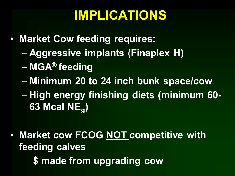 IMPLICATIONS Market Cow feeding requires: –Aggressive implants (Finaplex H) –MGA ® feeding –Minimum 20 to 24 inch bunk space/cow –High energy finishing diets (minimum 60- 63 Mcal NE g ) Market cow FCOG NOT competitive with feeding calves $ made from upgrading cow