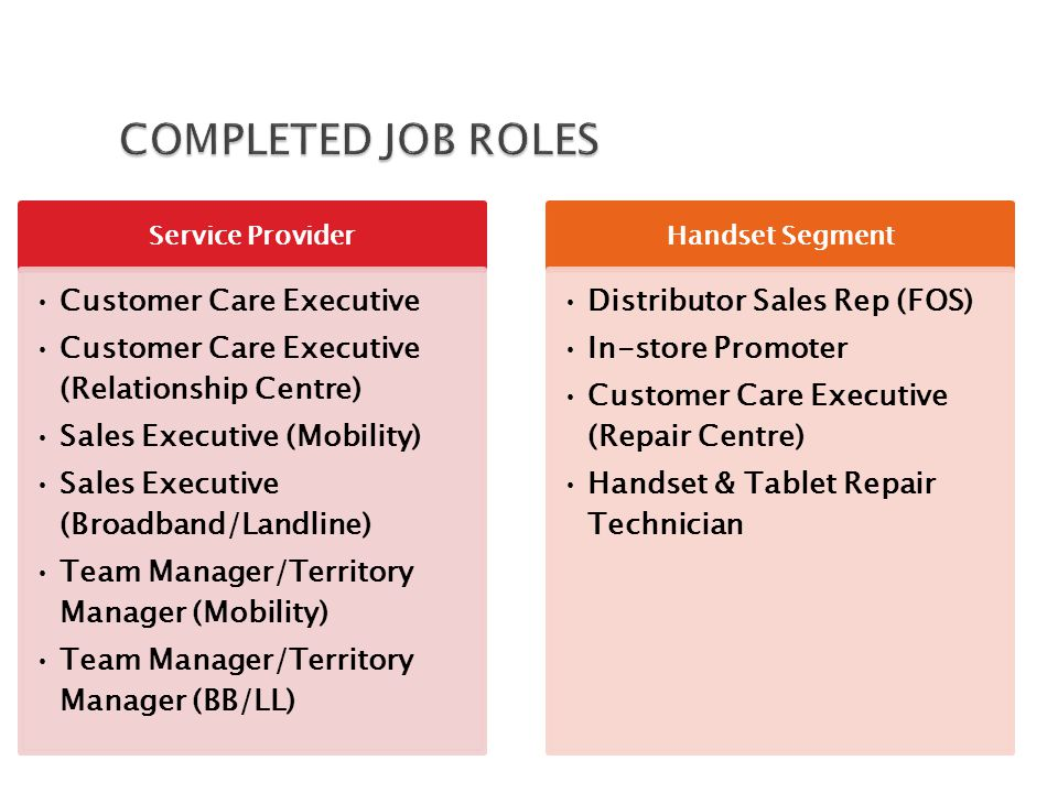 Job Roles Education Qualification Distributor Sales ManagerMBA(Telecom/Marketing) In-store Promoter ManagersMBA(Telecom/Marketing) Customer Care Manager(Repair Centre)MBA(Telecom/Marketing) Handset & Tablet Repair ManagerMBA (Telecom & Marketing)