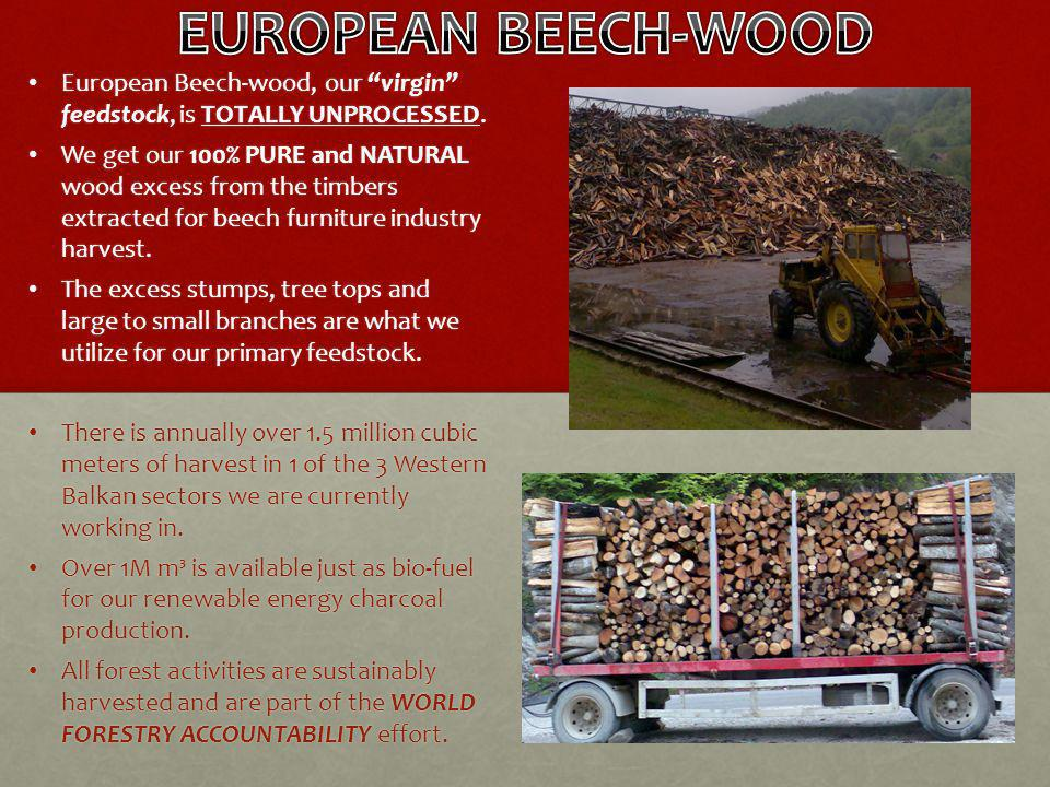 European Beech-wood, our virgin feedstock, is TOTALLY UNPROCESSED.