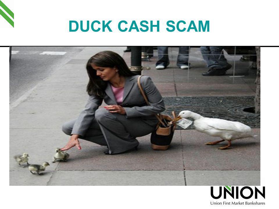 DUCK CASH SCAM