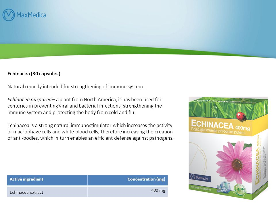 Echinacea (30 capsules) Natural remedy intended for strengthening of immune system.