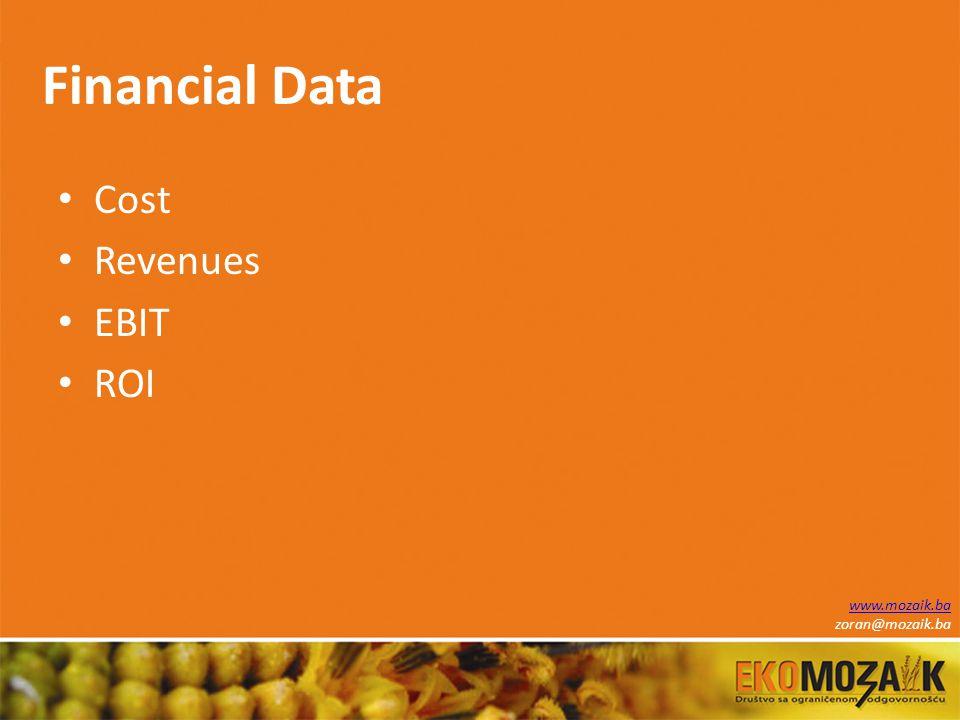 Financial Data Cost Revenues EBIT ROI www.mozaik.ba zoran@mozaik.ba