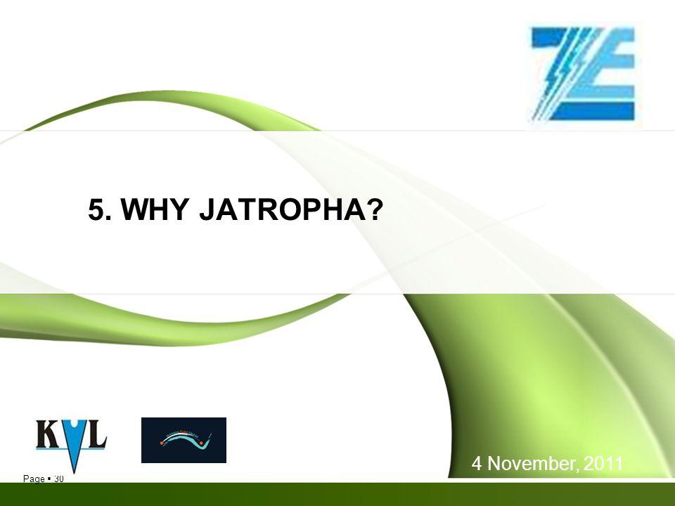 Page 30 5. WHY JATROPHA? 4 November, 2011