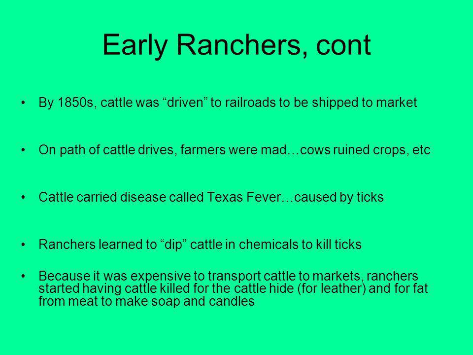 Early Ranchers, cont By 1850s, cattle was driven to railroads to be shipped to market On path of cattle drives, farmers were mad…cows ruined crops, etc Cattle carried disease called Texas Fever…caused by ticks Ranchers learned to dip cattle in chemicals to kill ticks Because it was expensive to transport cattle to markets, ranchers started having cattle killed for the cattle hide (for leather) and for fat from meat to make soap and candles