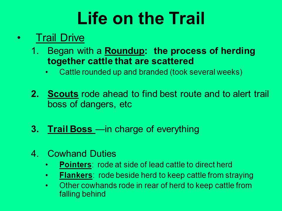Life on the Trail Trail Drive 1.Began with a Roundup: the process of herding together cattle that are scattered Cattle rounded up and branded (took several weeks) 2.Scouts rode ahead to find best route and to alert trail boss of dangers, etc 3.Trail Boss in charge of everything 4.Cowhand Duties Pointers: rode at side of lead cattle to direct herd Flankers: rode beside herd to keep cattle from straying Other cowhands rode in rear of herd to keep cattle from falling behind