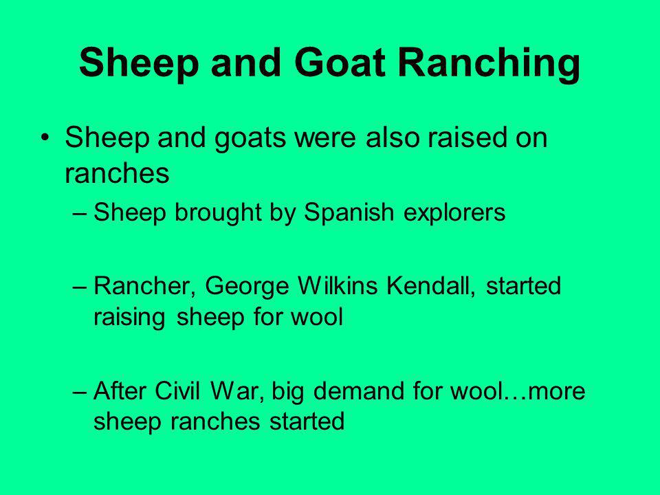 Sheep and Goat Ranching Sheep and goats were also raised on ranches –Sheep brought by Spanish explorers –Rancher, George Wilkins Kendall, started raising sheep for wool –After Civil War, big demand for wool…more sheep ranches started