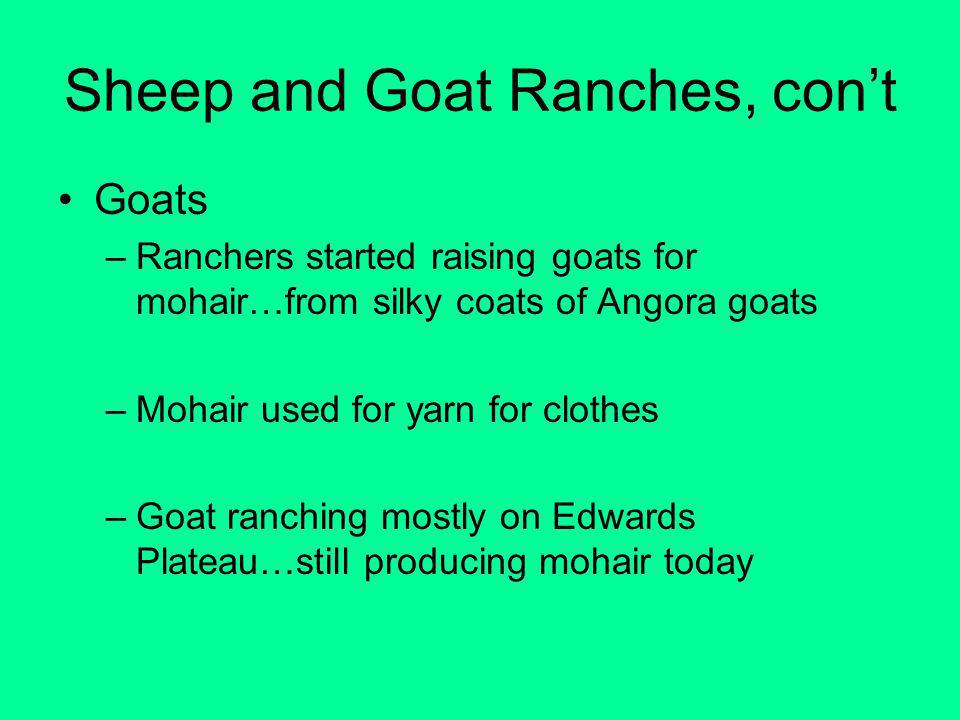 Sheep and Goat Ranches, cont Goats –Ranchers started raising goats for mohair…from silky coats of Angora goats –Mohair used for yarn for clothes –Goat ranching mostly on Edwards Plateau…still producing mohair today