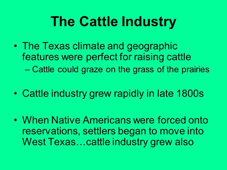The Cattle Industry The Texas climate and geographic features were perfect for raising cattle –Cattle could graze on the grass of the prairies Cattle industry grew rapidly in late 1800s When Native Americans were forced onto reservations, settlers began to move into West Texas…cattle industry grew also