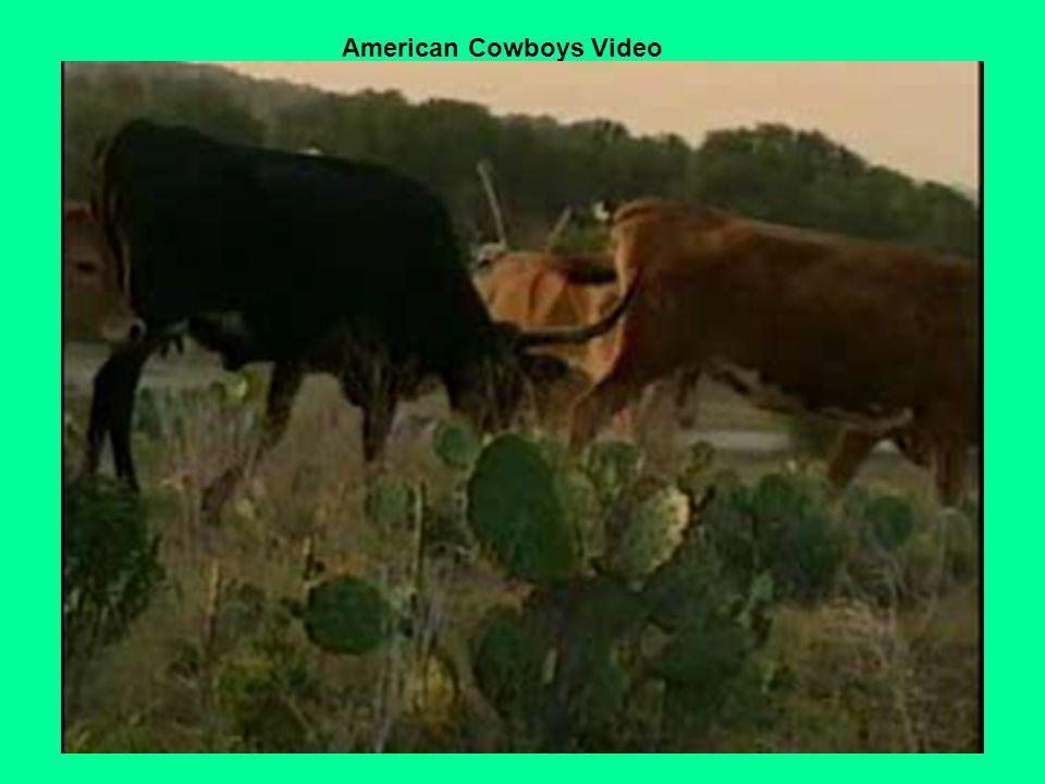 American Cowboys Video