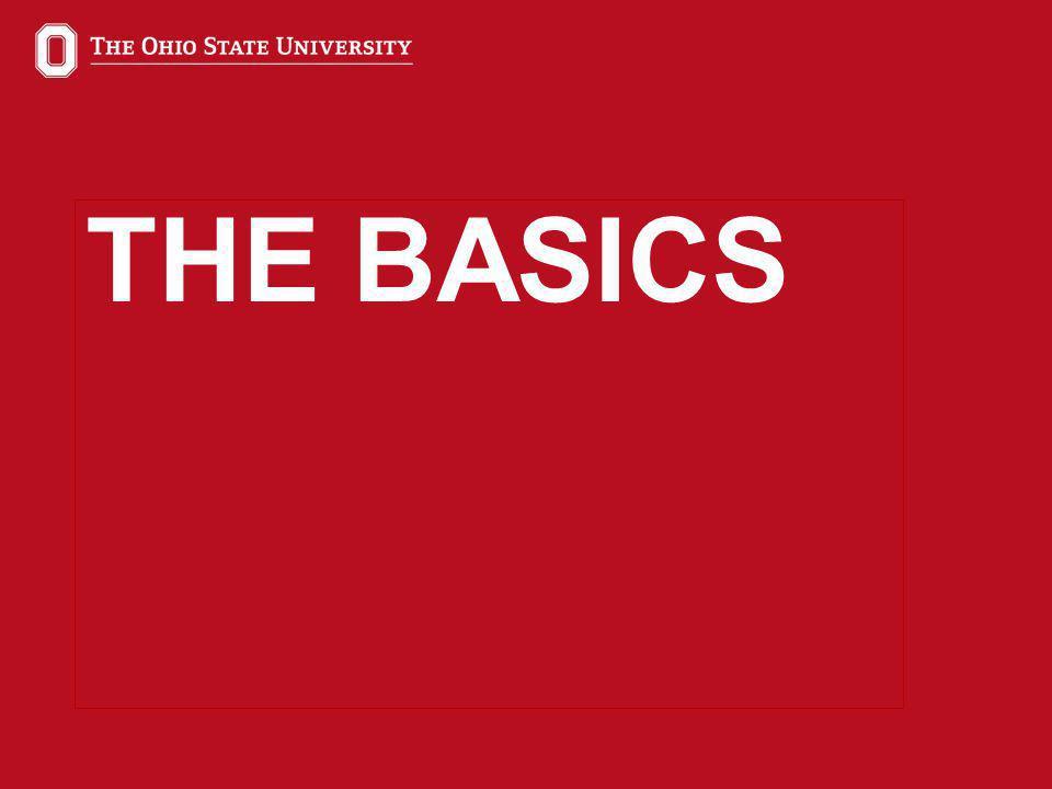 5 THE BASICS