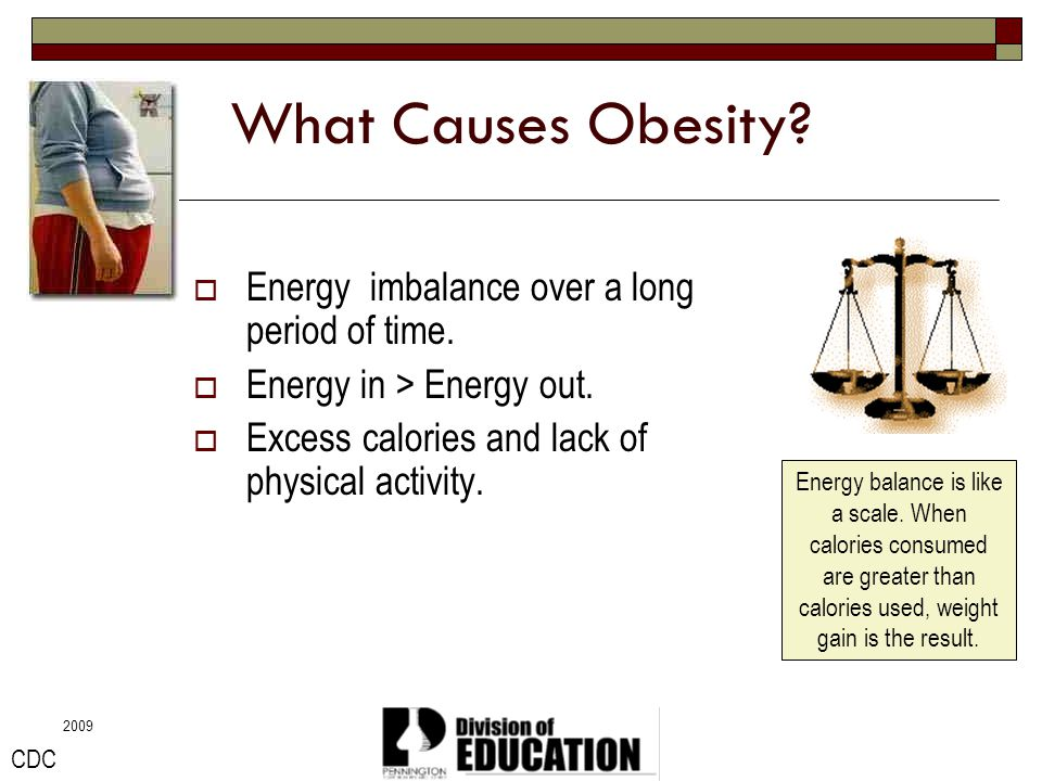 2009 Calories Used Eating, digestion, sleeping, breathing, and movement.