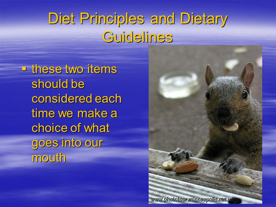 Diet Principles and Dietary Guidelines these two items should be considered each time we make a choice of what goes into our mouth these two items should be considered each time we make a choice of what goes into our mouth