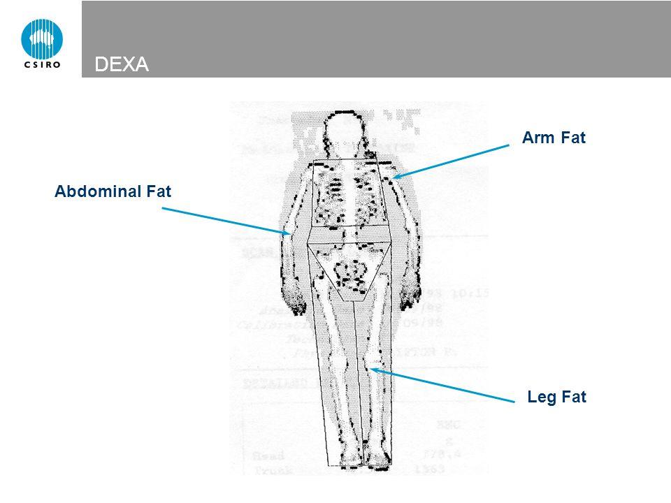 Arm Fat Leg Fat Abdominal Fat DEXA