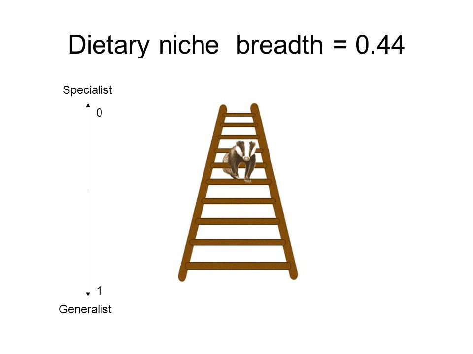 Dietary niche breadth = 0.44 Specialist Generalist 0 1