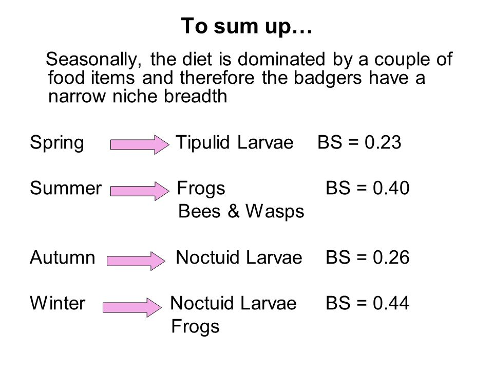 To sum up… Seasonally, the diet is dominated by a couple of food items and therefore the badgers have a narrow niche breadth Spring Tipulid Larvae BS