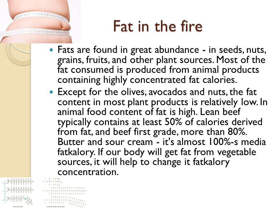 Fat in the fire Fats are found in great abundance - in seeds, nuts, grains, fruits, and other plant sources.