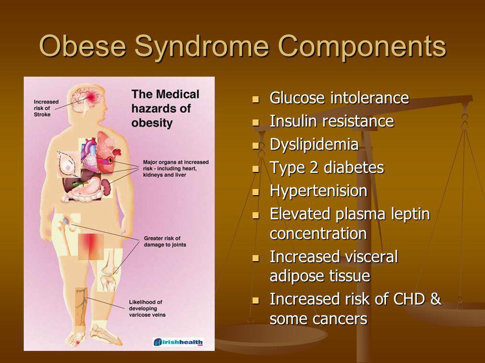 Obese Syndrome Components Glucose intolerance Insulin resistance Dyslipidemia Type 2 diabetes Hypertenision Elevated plasma leptin concentration Incre