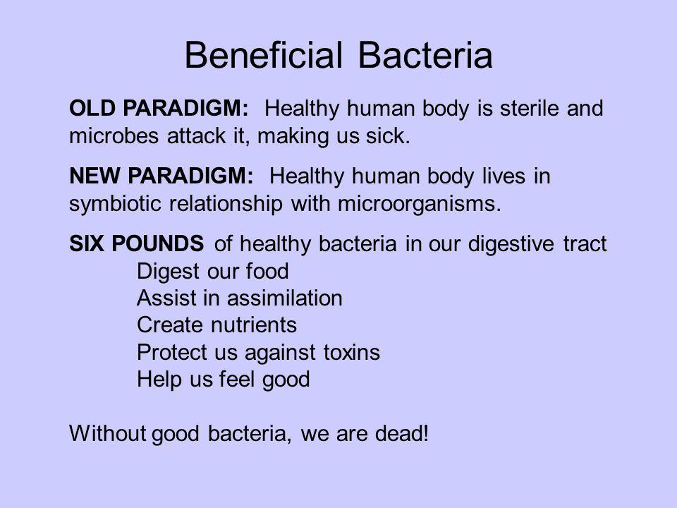 Beneficial Bacteria OLD PARADIGM: Healthy human body is sterile and microbes attack it, making us sick. NEW PARADIGM: Healthy human body lives in symb