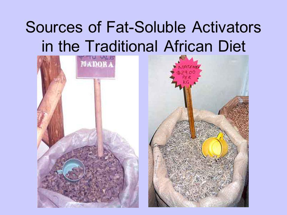 Sources of Fat-Soluble Activators in the Traditional African Diet