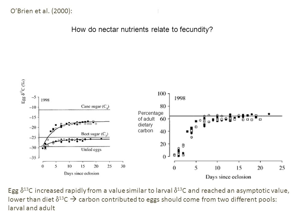 Percentage of adult dietary carbon OBrien et al. (2000): Egg 13 C increased rapidly from a value similar to larval 13 C and reached an asymptotic valu