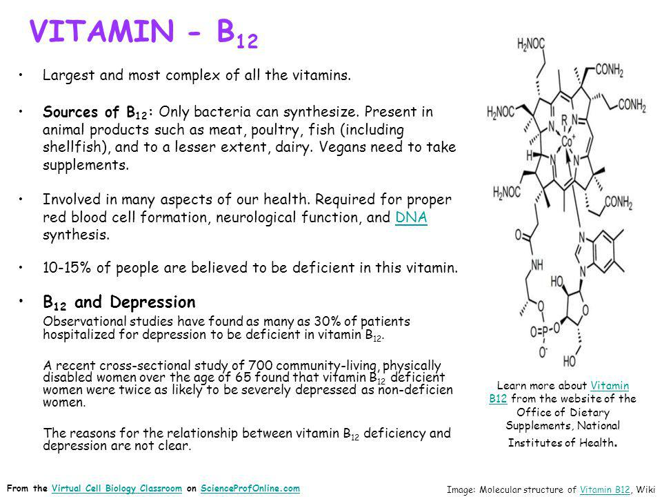 VITAMIN - B 12 Largest and most complex of all the vitamins. Sources of B 12 : Only bacteria can synthesize. Present in animal products such as meat,