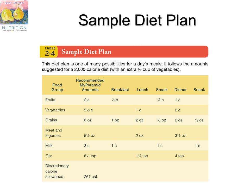 Sample Diet Plan