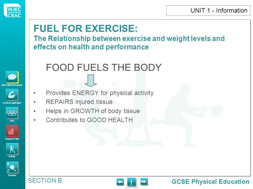 GCSE Physical Education Information/Discussion Practical Application Links Diagram/Table Activity Revision MAIN MENU FUEL FOR EXERCISE: The Relationsh