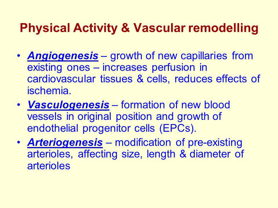 Physical Activity & Vascular remodelling Angiogenesis – growth of new capillaries from existing ones – increases perfusion in cardiovascular tissues & cells, reduces effects of ischemia.